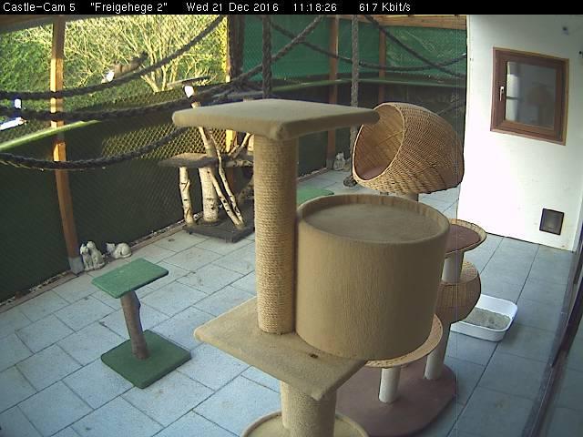 Nierott Castle Webcam